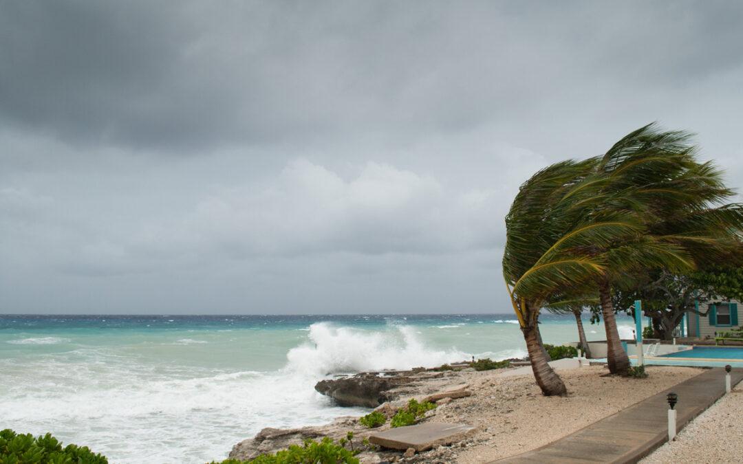 Hurricane and disaster preparedness