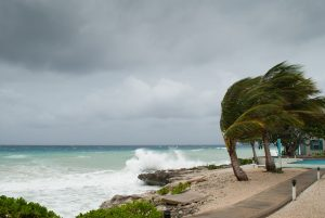 Hurricane and disaster preparedness